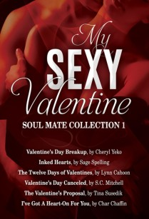 cropped-my-sexy-valentine-book-cover1.jpg
